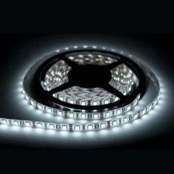 Taśma LED 3528 zimny biały 5m/300 diod IP65